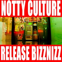release-bizznizz-cover